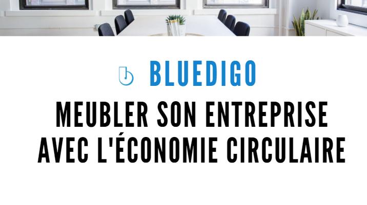 Bluedigo